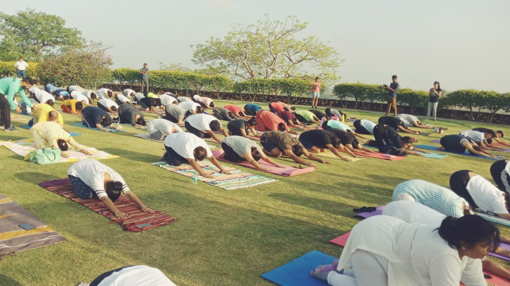 yoga and meditation in udaipur